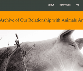 We Animals Archive