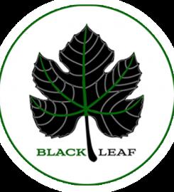 Black Leaf Vegan