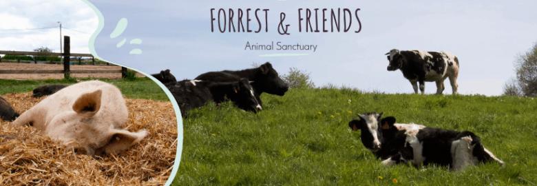 Forrest & Friends